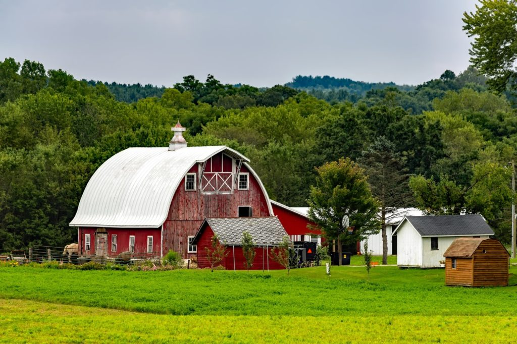 amish built shed ideas